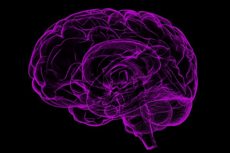 La malaltia d'Alzheimer és un repte social i sanitari que afecta tothom